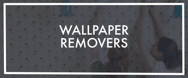 Wallpaper Steamer